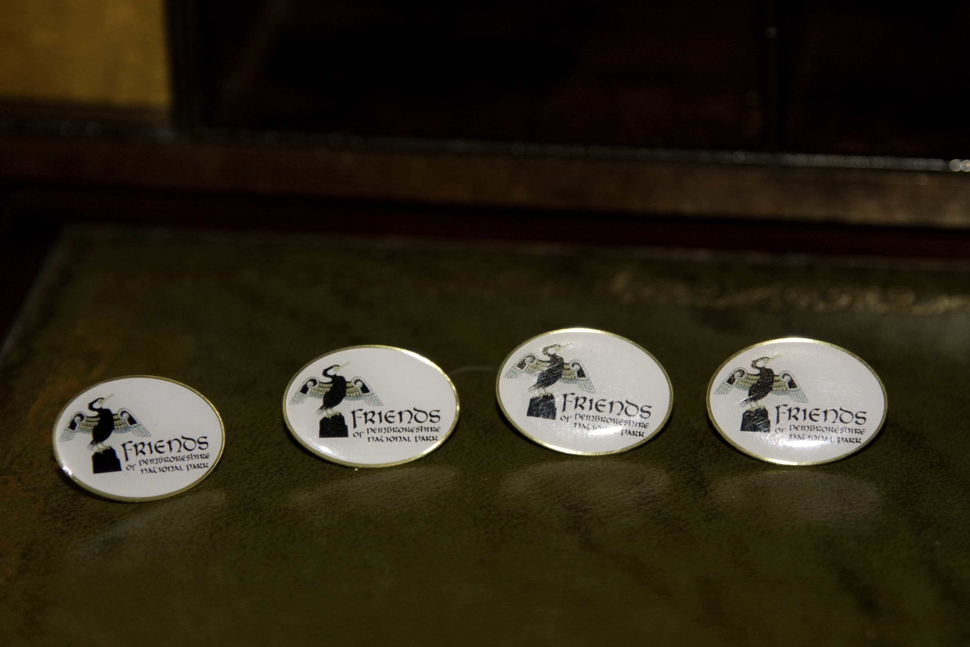 image of friends lapel badges