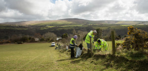Hedge planting at Panlan Uchaf - Pembrokeshire coast national park
